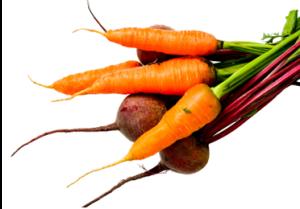 beet-carrot